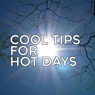 CoolTips-310-2